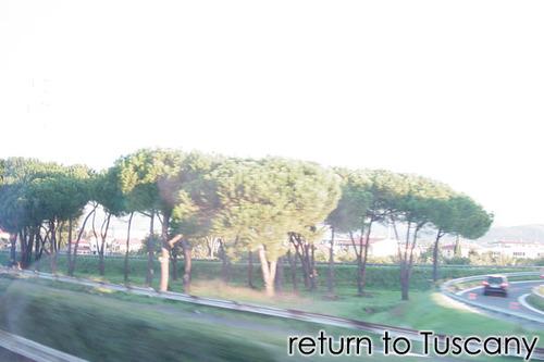 Rome06001