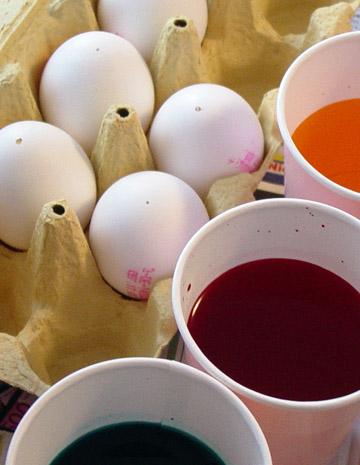Egg3_1